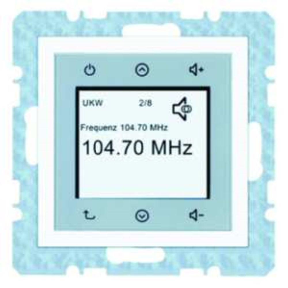 BERKER 28848989 Radio Touch S.1/B.3/B.7 pw
