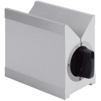 Doppelprisma magnetisch 100 mm gehärtet in Holzetu i