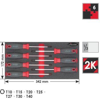 TORX-SCHRAUBENDREHER-SATZ I.EINLAGE 7TLG