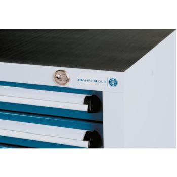 Abdeckplatte für Schranksystem 550 B 1015 x 550