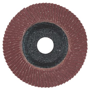Lamellenschleifteller 125 mm P 60, Normalkorund, S