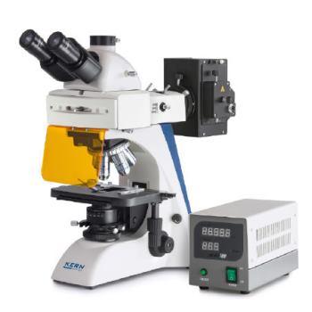 Durchlichtmikroskop (Fluoreszenz) / 4/10/20/40/100