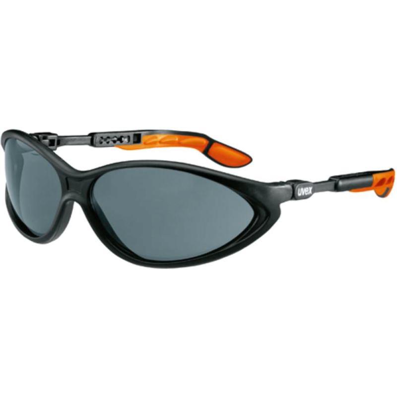 Schutzbrille cybric grau